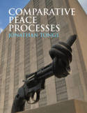 Comparative peace processes