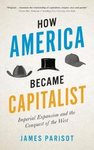 How America became capitalist. 9780745337876